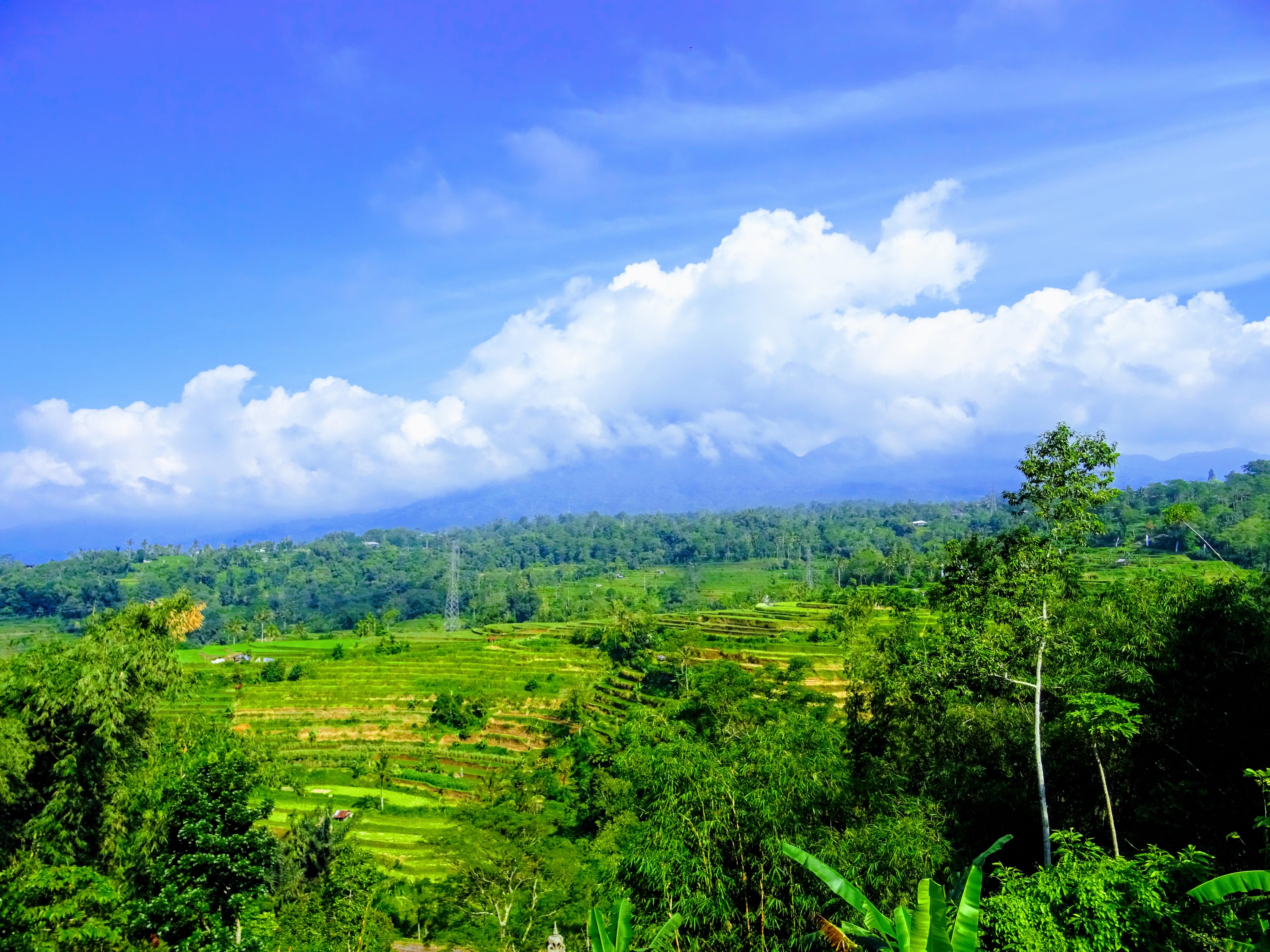 Zelené rýžové terasy jsou tu kam se člověk podívá © Filip Altman