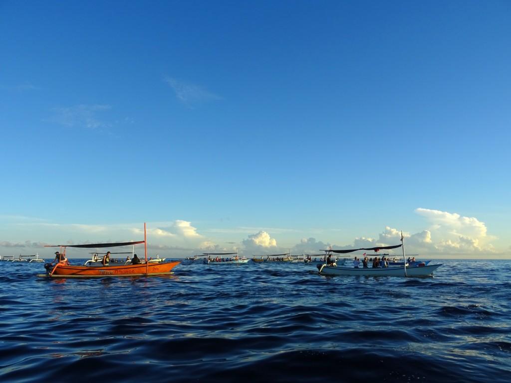 Desítky lodí s turisty čekající na delfíny © Filip Altman